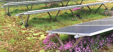 Henke Dachdecker für Bückeburg - Bauder Solar Gründach