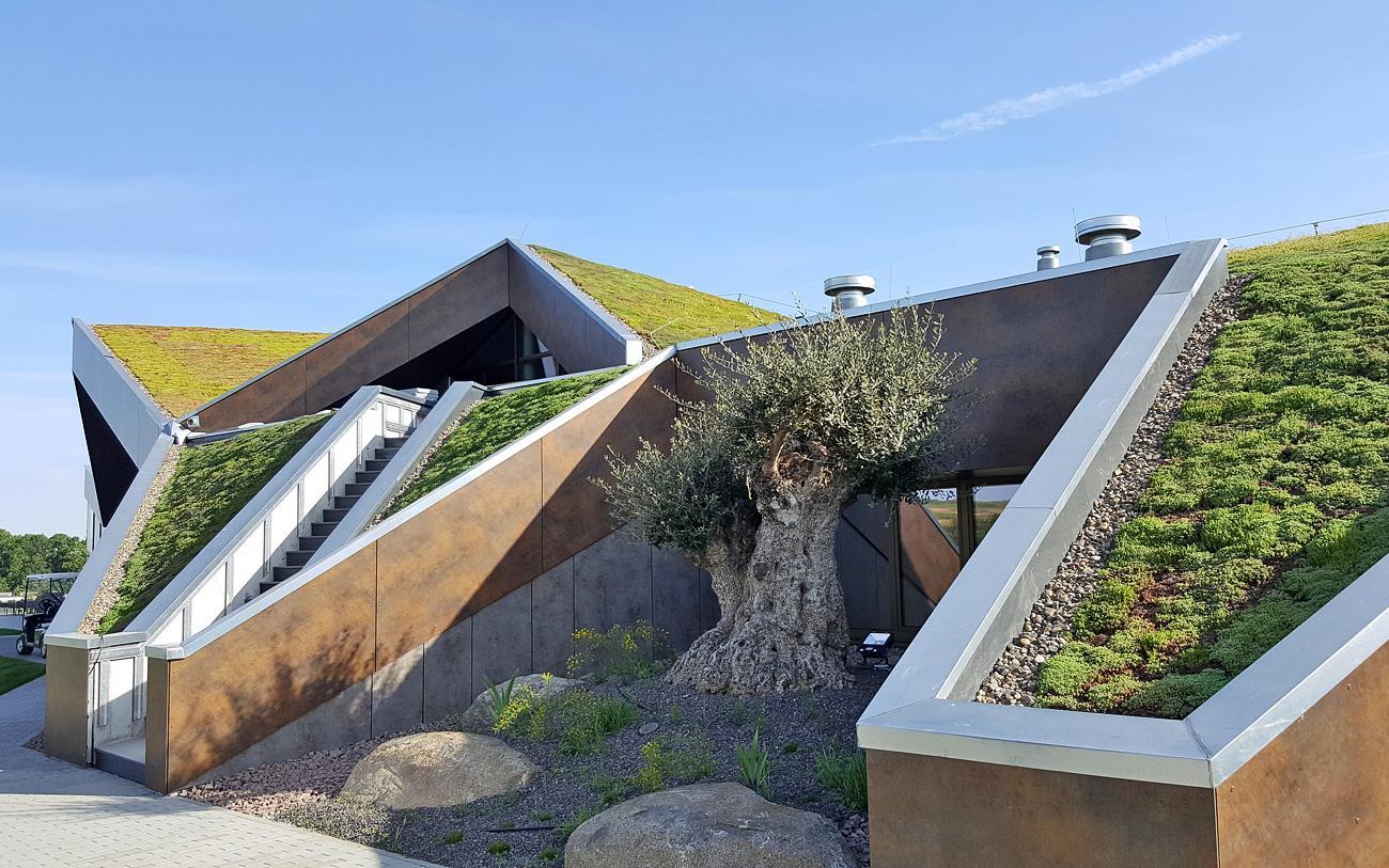 Henke Dachdecker für die Region Hannover - Schrägdächer sind problemlos begrünbar, sofern man ihre Besonderheiten beachtet.