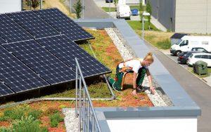 Henke Dachdeckerei | Zimmerei | Solartechnik für Stadthagen - Zwei auf einen Streich: das Schienensystem Fallnet® Rail zur Absturzsicherung ist ebenfalls auf den Solarbasis-Platten verankert