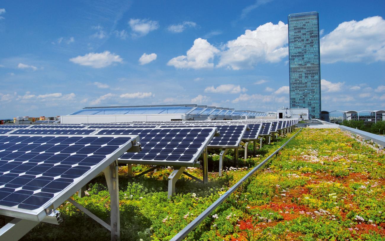 Henke Dachdeckerei | Zimmerei | Solartechnik - Die Dachbegrünung sorgt für eine kühlere Umgebungstemperatur und dadurch für mehr Ertrag der Photovoltaikanlage